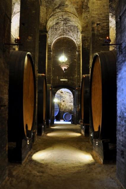 cameron-tuscany-montepulciano-cellars