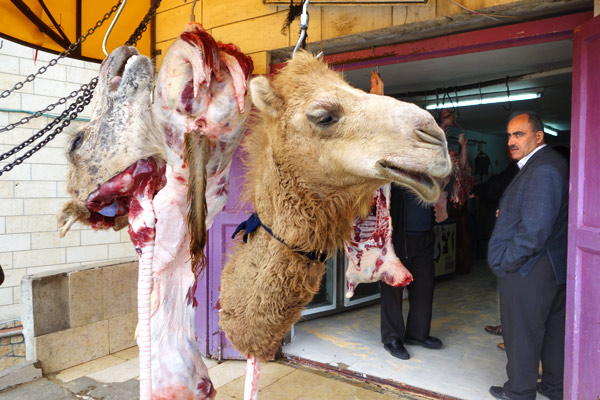 The people of Hebron are seen as a bit different. They speak more slowly. Perhaps because of their Bedouin heritage, they have a tighter tribal community, and, I'm told, this is the only place you'll find fresh camel meat at the butcher's.
