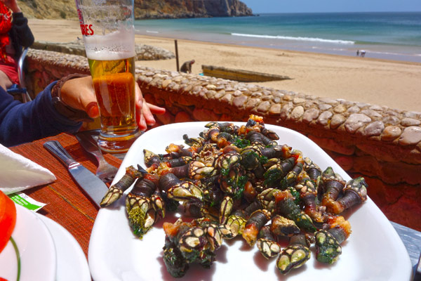 Goose barnacles, called percebes in Portugal, are a delicacy. They are expensive because they're dangerous to harvest — on rocky promontories where the waves are fierce. They're nice to munch with a beer. And 300 grams with toast and a salad make a wonderful lunch.