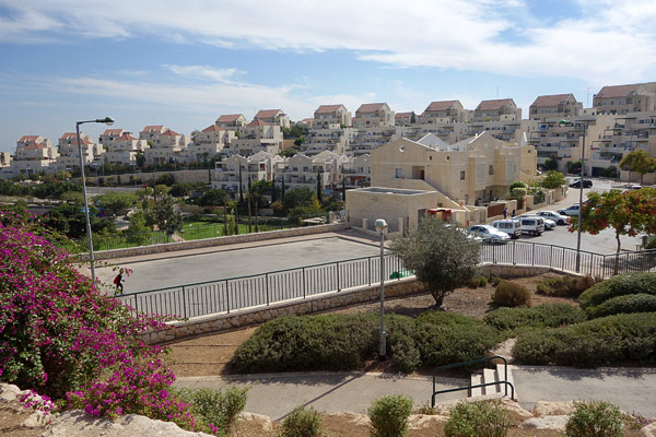 Settlements are planned communities — beautifully landscaped and designed, offering the same modern conveniences and efficiency you'd expect in an American gated community.