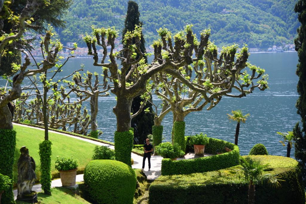 Balbianello Trees