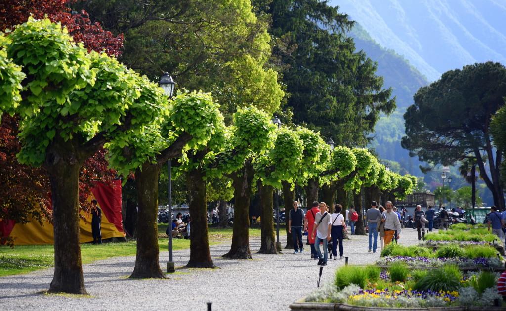 Bellagio park