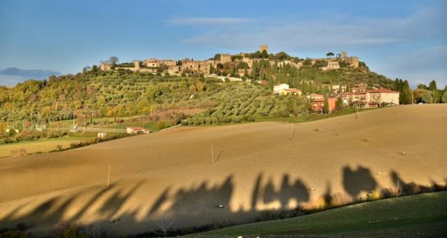 cameron-tuscany-tree-shadows