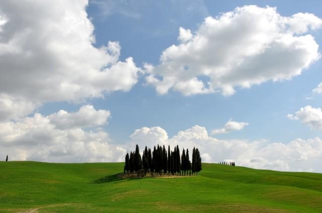 cameron-tuscany-rondo