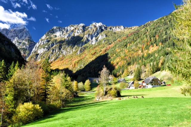 cameron-slovenia-logarska-dolina-3