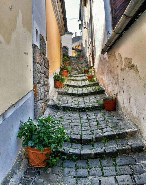 cameron-hungary-szentendre-steps