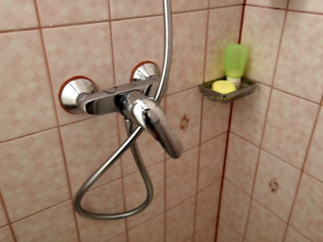 cameron-pet-peeve-shower