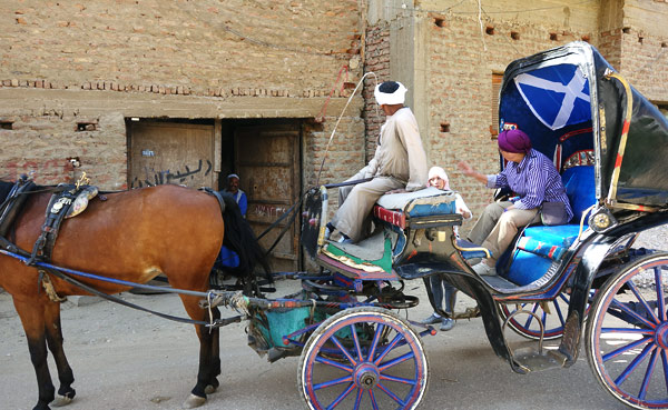 x17-horse-carriage-in-village